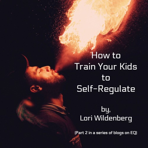 How to Train Your Kids to Self-Regulate (EQ part 2)